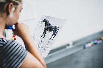 Dziewczynka i rysunek konia